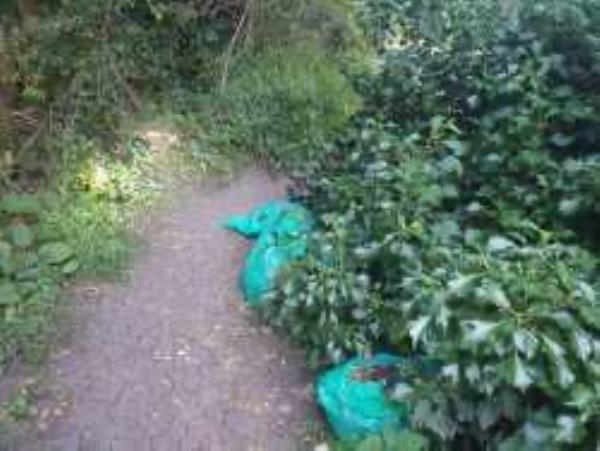 Mountsfield Park. Bags dumped over in park from no 55-61 Mountfield Close, London, SE6 1AF