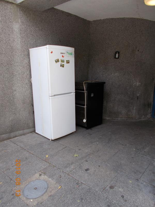 Dumped fridge freezer and cooker adjacent to the main entrance door-irving court 203 wensley road