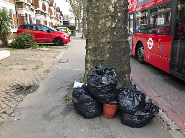 Garden waste in black sacks -108 Brownhill Road, London, SE6 2BG