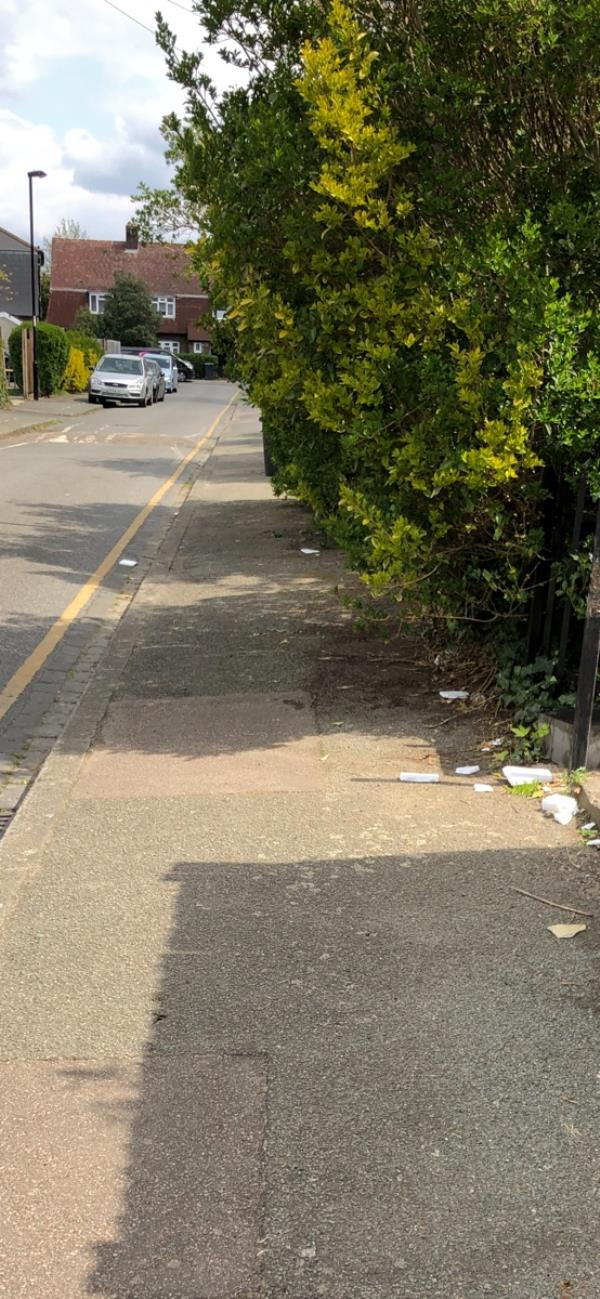 Overgrown tree/hedge blocking the pedestrian sidewalk and wheelchair users.-2a Knapmill Way, Bellingham, SE6 3TD