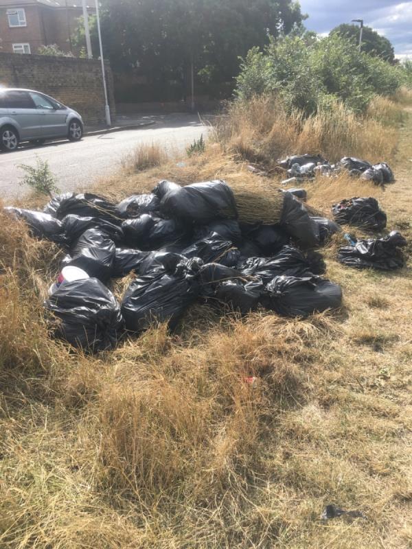Big dump of black bin bagged waste-76 Whitta Road, Manor Park, E12 5DA