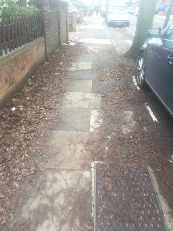 Lots of rubbish by 22 Gunnersbury Crescent -26 Gunnersbury Crescent, London, W3 9