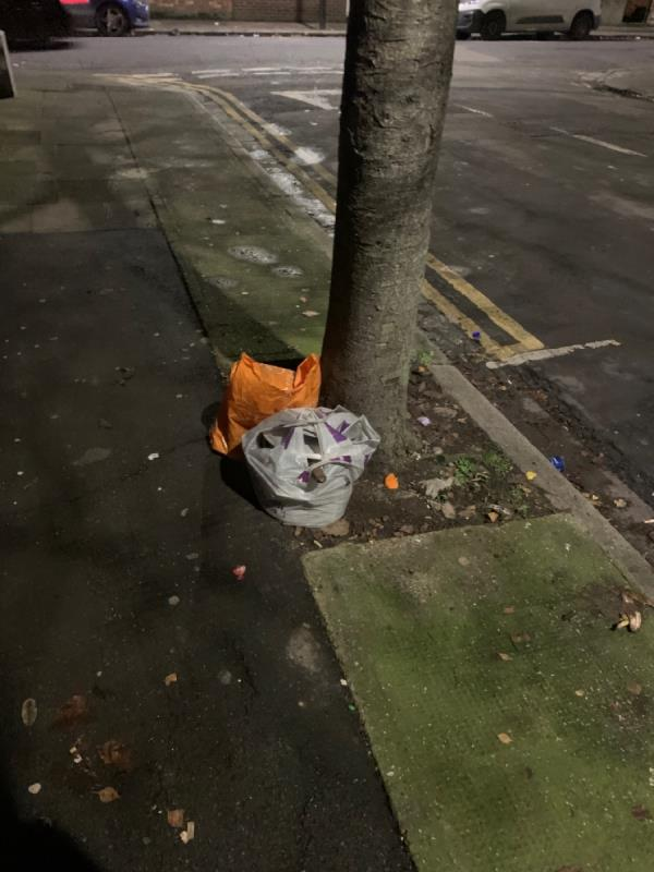Rubbish dumped by tree-4 Langdon Road, London, E6 2QB