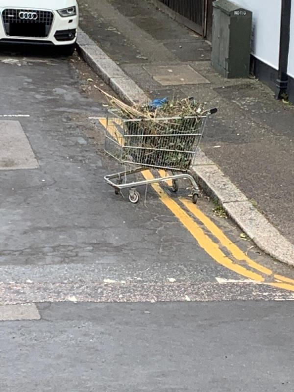 Abandoned trolley full of gardening waste left in street -21 Trevelyan Road, London, E15 1SU