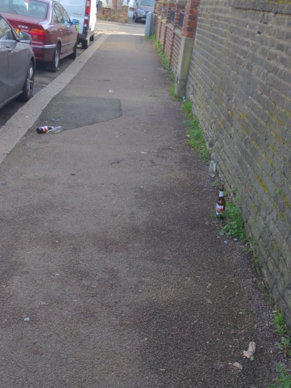 Poor standard of street cleaning on Blashford Street-Cherrywood Lodge Birdwood Avenue, London, SE13 6UR