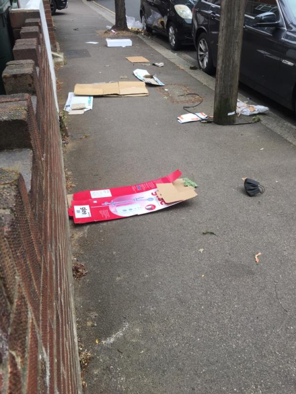 Rubbish all around the street  image 2-52 Haig Road West, London, E13 9LH