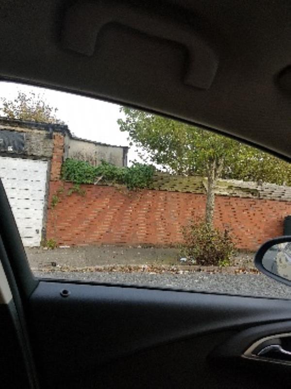 Litter along Brevitt rd Knox rd and surrounding streets. Street clean required.-36 Brevitt Road, Wolverhampton, WV2 3EQ