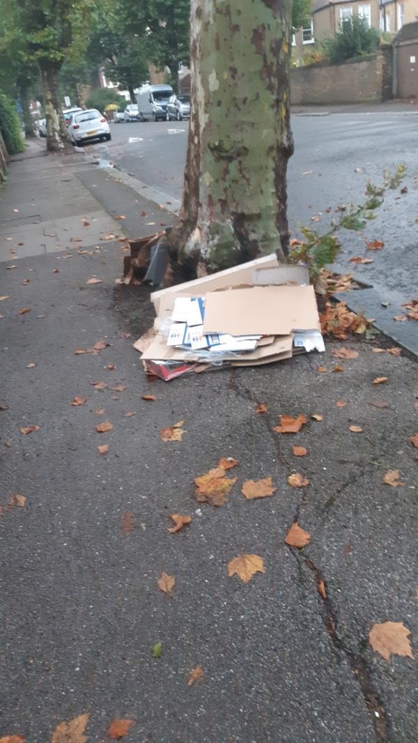 Rubbish on pavement -53c Inchmery Road, London, SE6 2NA