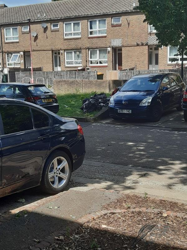 household waste in black bags dumped on the grass verge-52 Hoskin's Close, Canning Town, E16 3RH