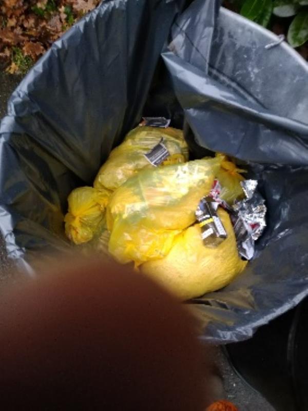 Bin full of rabbit waste no evidence /taken -1 Galsworthy Drive, Reading, RG4 6PE