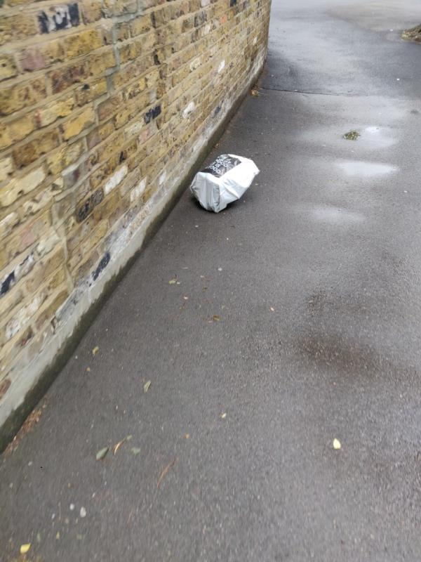 just a bad of rubbish-116 Chestnut Avenue, London, E7 0JF