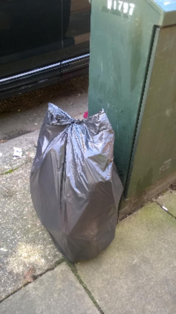 Tweedmouth Rd jw North St E13 : Bag of cardboard & plastic-73 North Street, London, E13 9HL