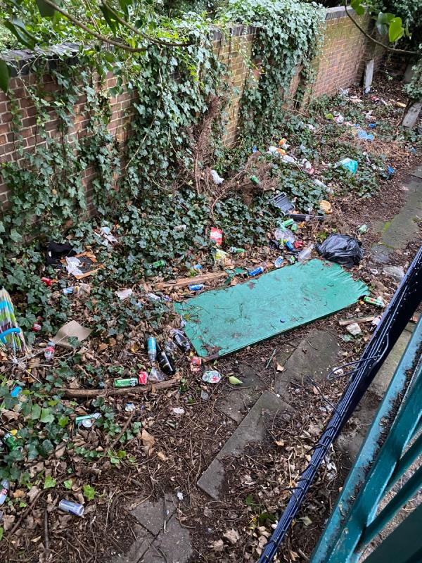 Rubbish and flying tipping you know it's there please clean it up Regularly -113 Earlham Grove, London, E7 9AP