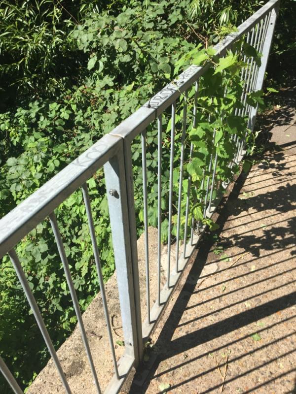 Pen graffiti on fence railings top-7 Heron Island, Reading RG4 8DQ, UK