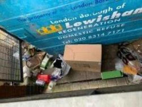 Pearce Court 131 Turnham Road. Rubbish not being put in the bins-127 Turnham Road, Brockley, SE4 2JG