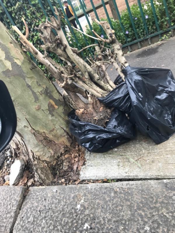 Garden waste -21 Wyndham Road, East Ham, E6 1AU