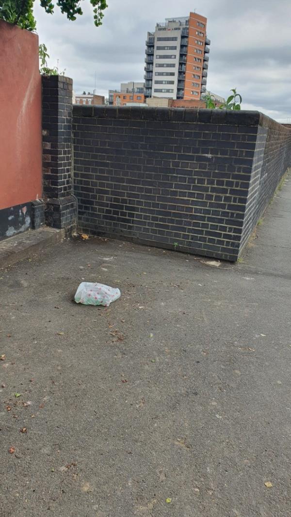 Bottles in bag-1b Manbey Park Road, London, E15 1EY
