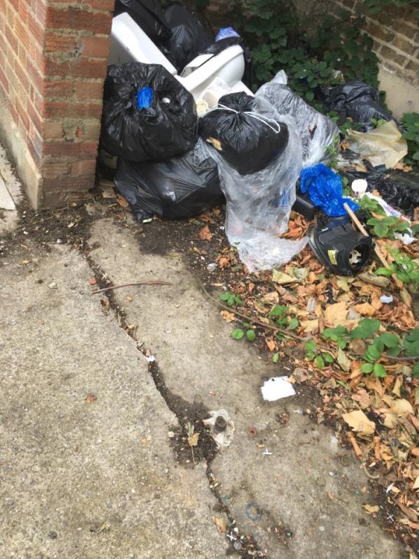 Rubbish -5 Byron Avenue, Manor Park, E12 6ST