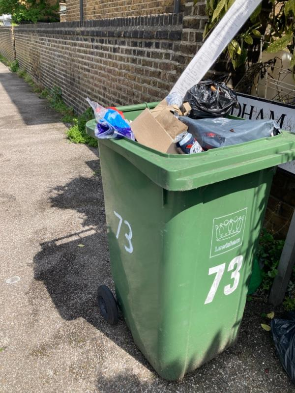 Green bin needs removing -57b Ringstead Road, London, SE6 2BU