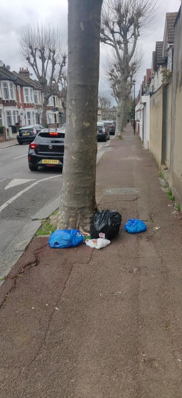 Shoebury road - bin bags-125 Burges Road, East Ham, E6 2BL