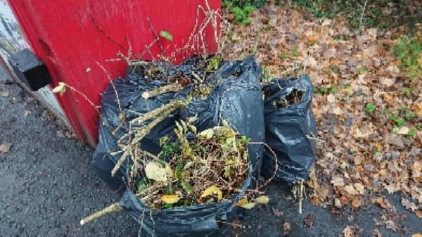 Garden waste flytipping removed -Russell Building, Reading RG2, UK