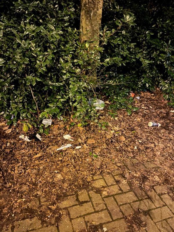 Loads of litter around bus stop -362 Willenhall Road, Wolverhampton, WV1 2QN