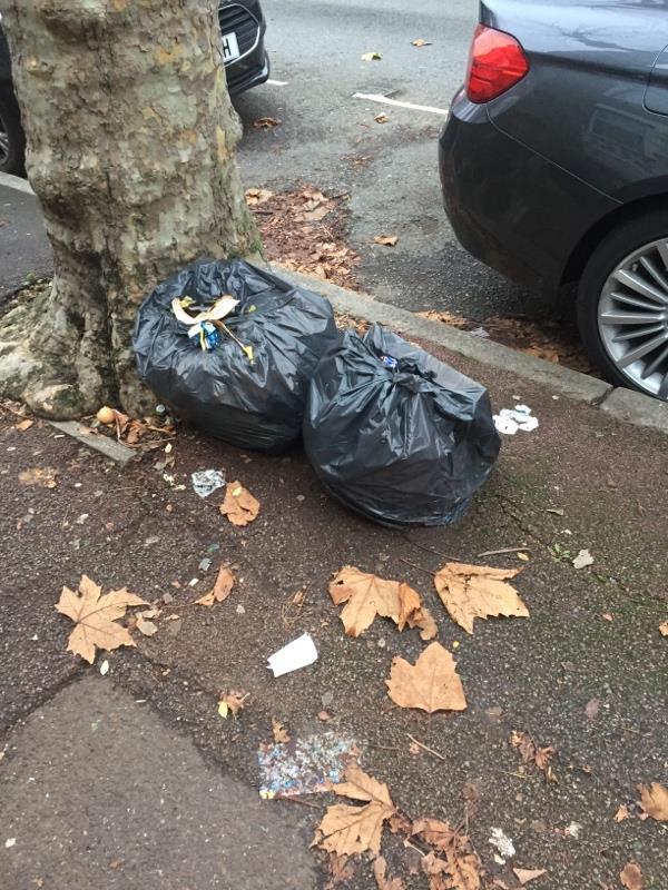 Rubbish dump -111 Shelley Avenue, London, E12 6