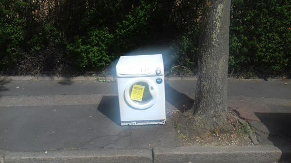 A washing machine dumped by the tree near 49 Shipman Road E16 -67 Shipman Road, Canning Town, E16 3DT