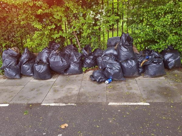Pls clear asap-4 Jellicoe Road, Tottenham, N17 7BL