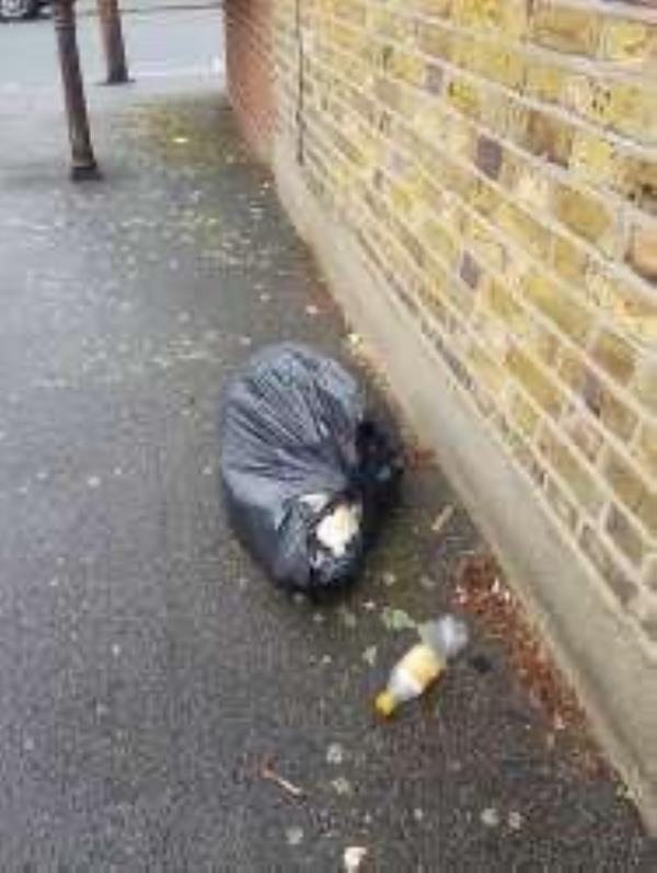 A bag of domestic rubbish just dumped in the alleyway between Harvard Road and Fordyce Road    -54 Harvard Road, London, SE13 6SF