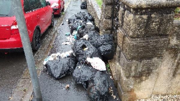dumped waste by 168 cholmeley-121 Cholmeley Road, Reading, RG1 3JY