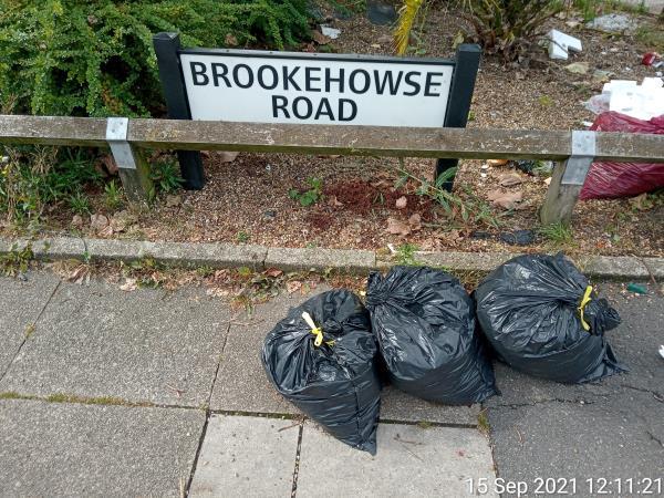 Garden waste-3 Brookehowse Road, London, SE6 3TJ