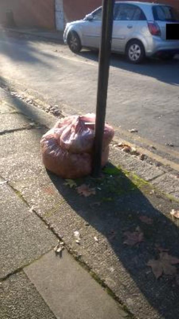 Vicars Close jw Portway E15 - x2 bags swept leaves-244 Portway, London, E15 3QY