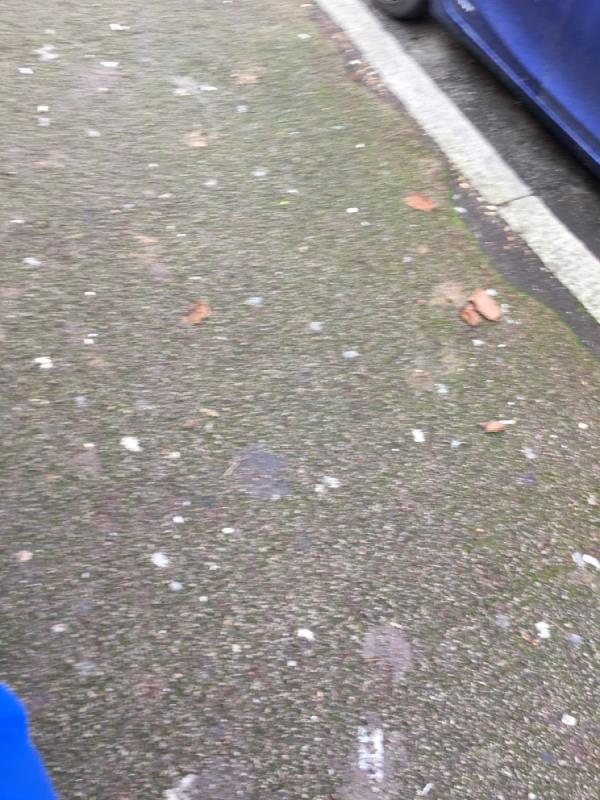 Poo needs removing  image 1-71 Coleridge Avenue, London, E12 6QR