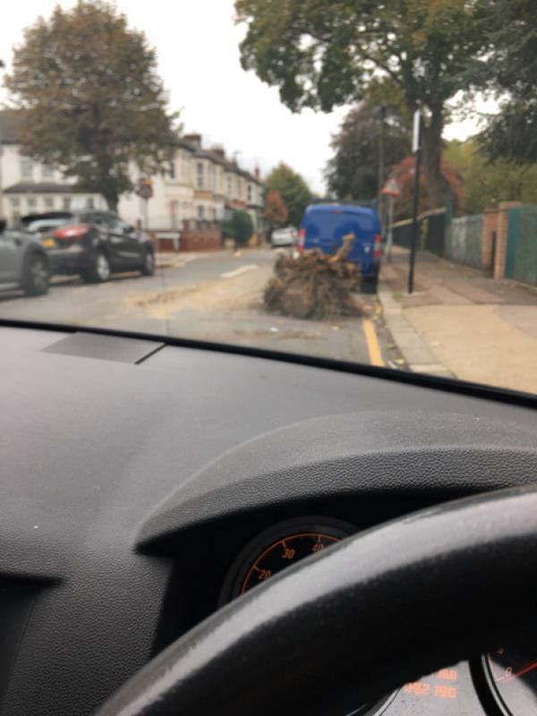 Tree needs removing  image 2-46 Woodhouse Grove, Manor Park, E12 6SR
