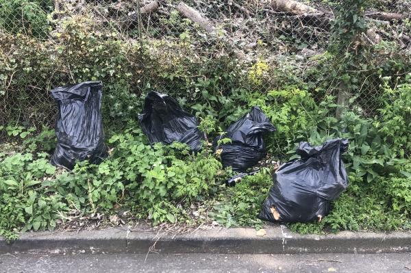 Various black refuse sacks dumped on embankment opposite 48 Fernbrook Road -48 Fernbrook Road