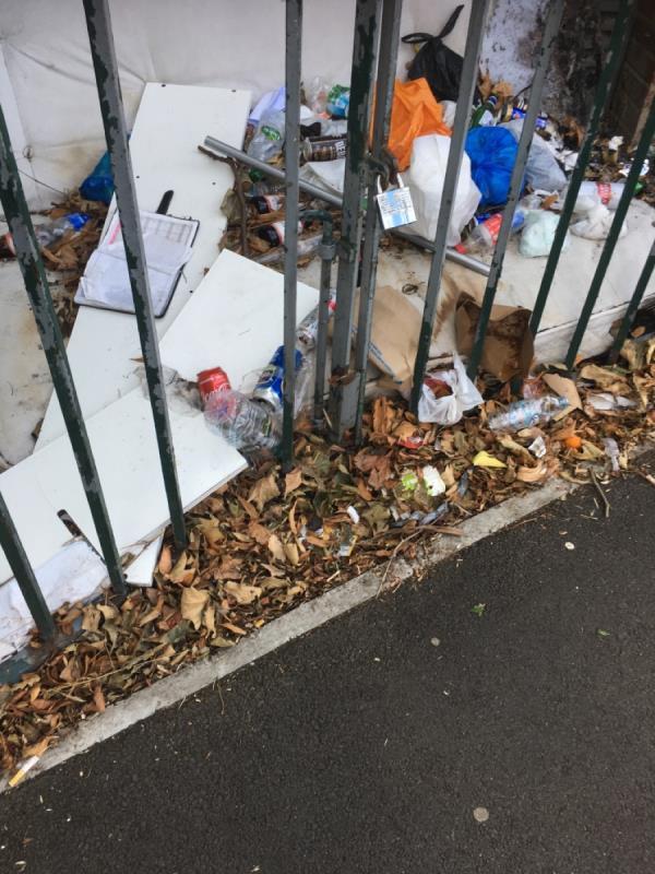 Rubbish dumped  image 2-351 Burges Road, East Ham, E6 2PB