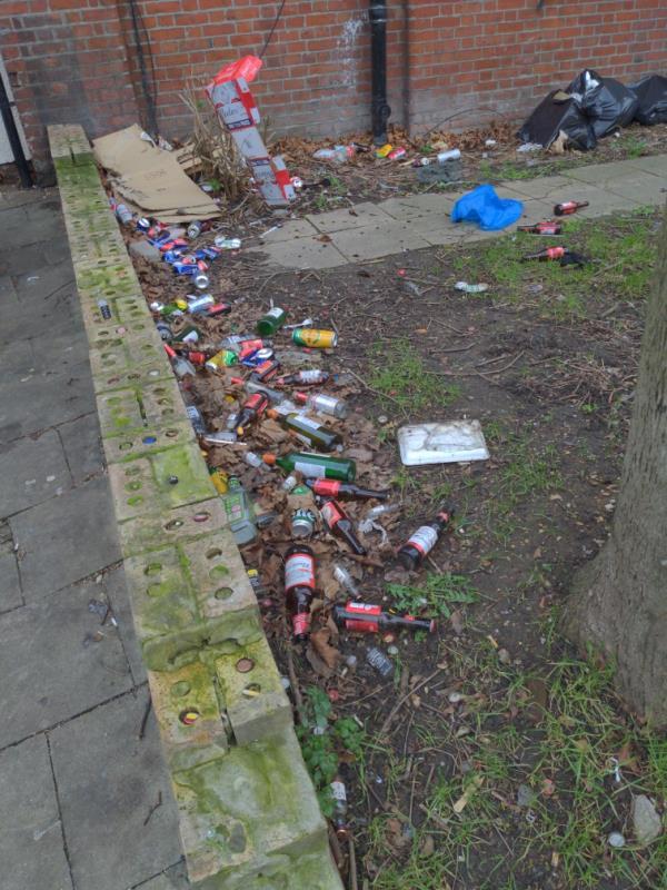 lots of litter-18 Memorial Avenue, London, E15 3BT