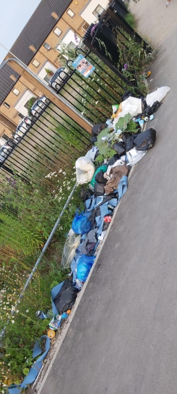 Over the last 6 months or so the trash here has increased and is increasing each day-15 Charles Bennion Walk, Leicester, LE4 5HU