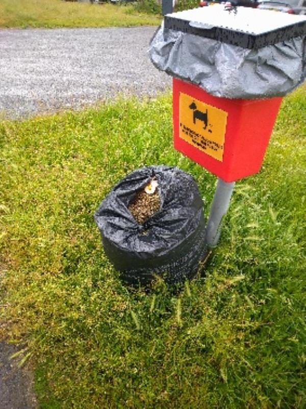 Bag of grass cuttings no evidence /taken -34 Gainsborough Rd, Reading RG30 3BZ, UK
