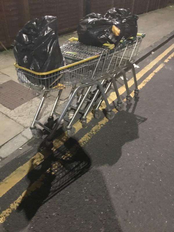 Trolleys dumped -71A Water Ln, London E15 4NL, UK