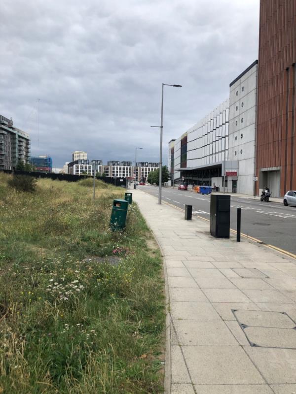 Litter in on land opposite the Stratford side entrance overflowing -Stratford International, Olympic Park, International Way, London E20 1YY, UK