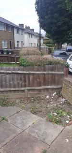 as you can see the green wast coming from n 56 thre was 3 bags of green wast.       image 2-58 Brockill Crescent, Brockley, SE4 2QB