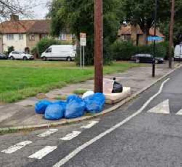 Please clear Street Cleansing Bags. Reported via Fix My Street-50 Oakridge Road