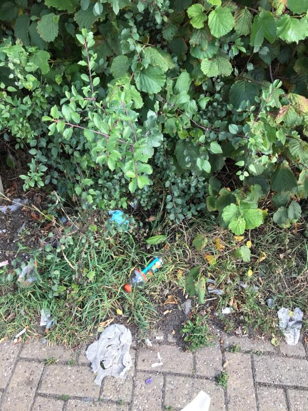 St Clement Court & Fosse Lane are a disgrace, it's disgusting, there's masks and gloves mixed in with the usual rubbish that the occupants of these flats leave all over the place. Should start dishing fines out for this 🤷🏻♀️ image 2-St. Clements Court, 94 Fosse Lane, Leicester, LE3 9AJ