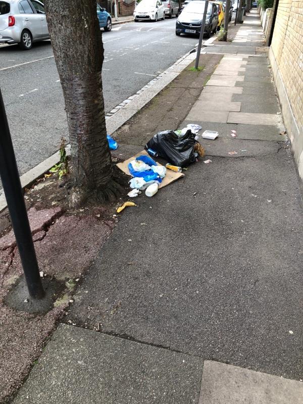 Split Bin bag and cardboard -10 Ravenhill Road, London, E13 9BN