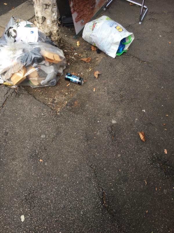 Rubbish dumped -488 Katherine Road, Upton Park, E7 8DZ