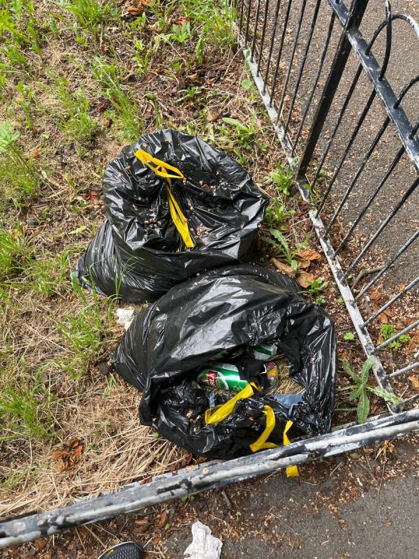 Black bags - grass & litter -16 Hall Drive, London, W7 1AB