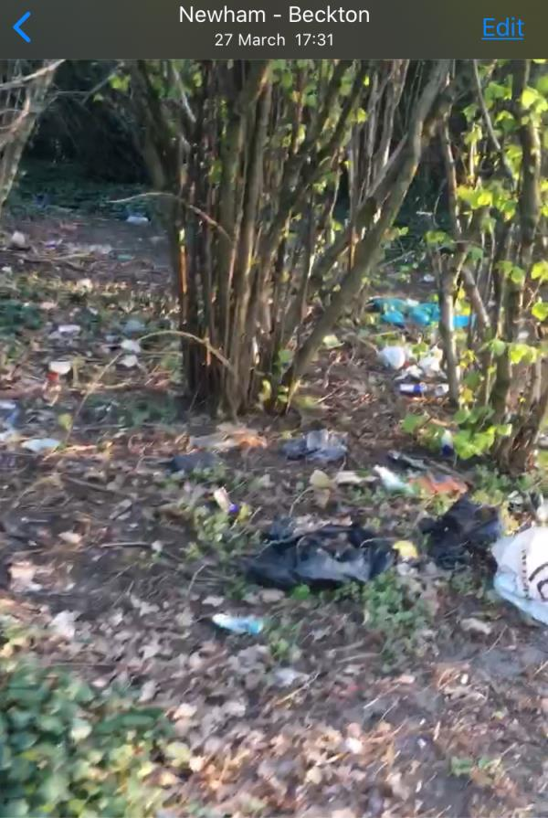 Actually Beckton is clean. But why do anyone clean under the plants and trees. there are many pieces of glass. This photos were taken near the Sainsbury.  image 1-1000 Newham Way, London E6 5JN, UK