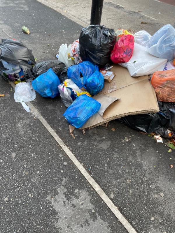 Rubbish -478a Katherine Road, Green Street East, E7 8DP